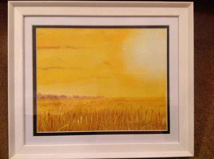 Golden Cornfield -