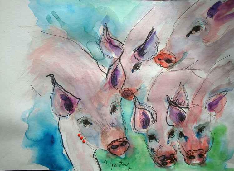 Funny piglets ! -