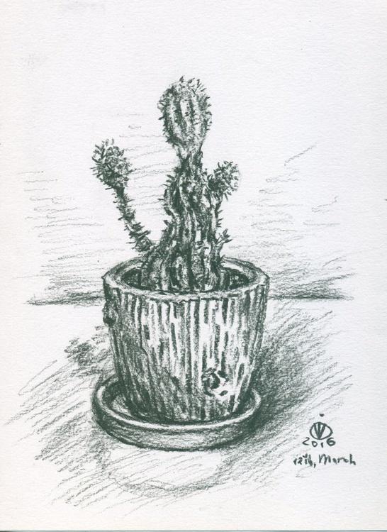 Cactus - Image 0