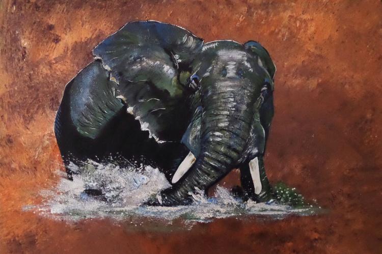 Elephant Bath - Image 0
