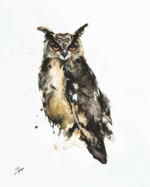 Eagle Owl (Bubo bubo) -