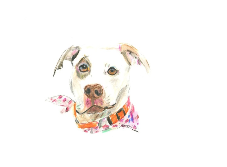 Dog with a lovely scarf - Image 0