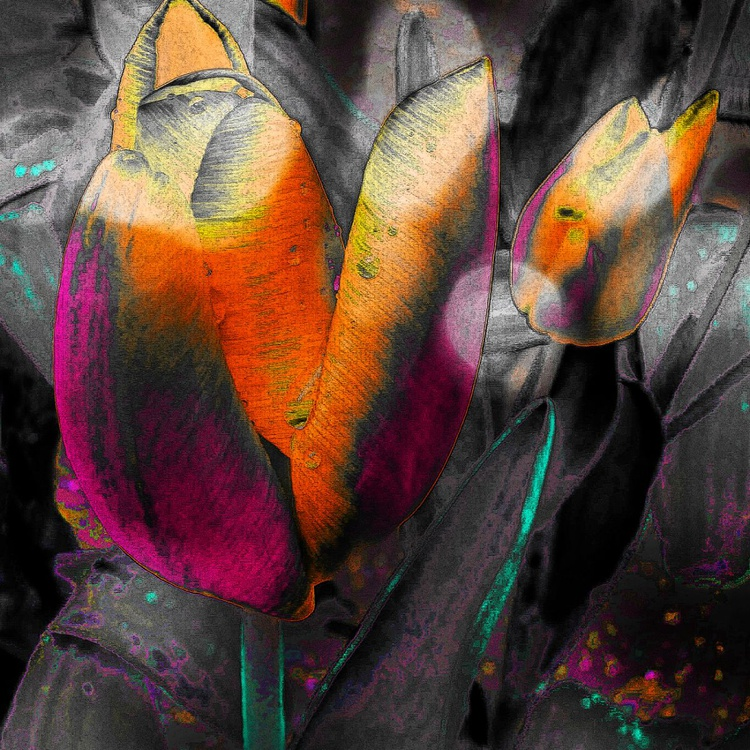 Spring Stain - Monoprint - Image 0