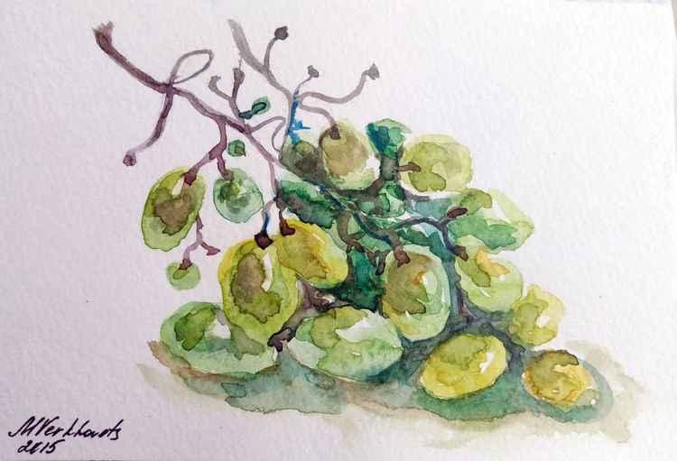 Grapes. -