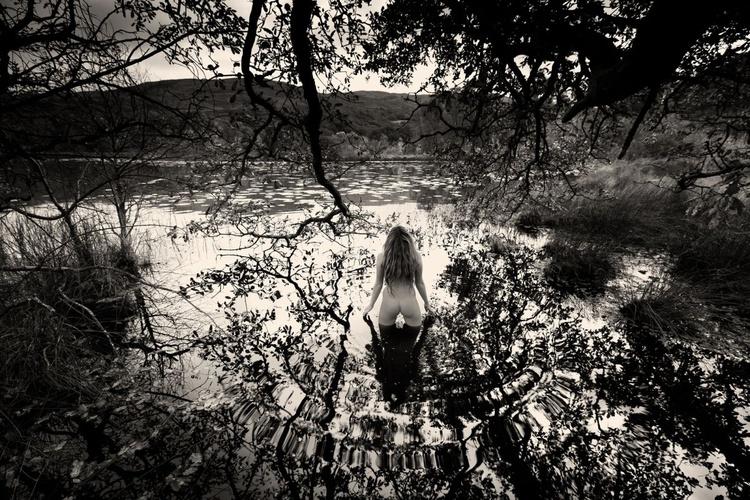 Swallowed by the Lake - Image 0