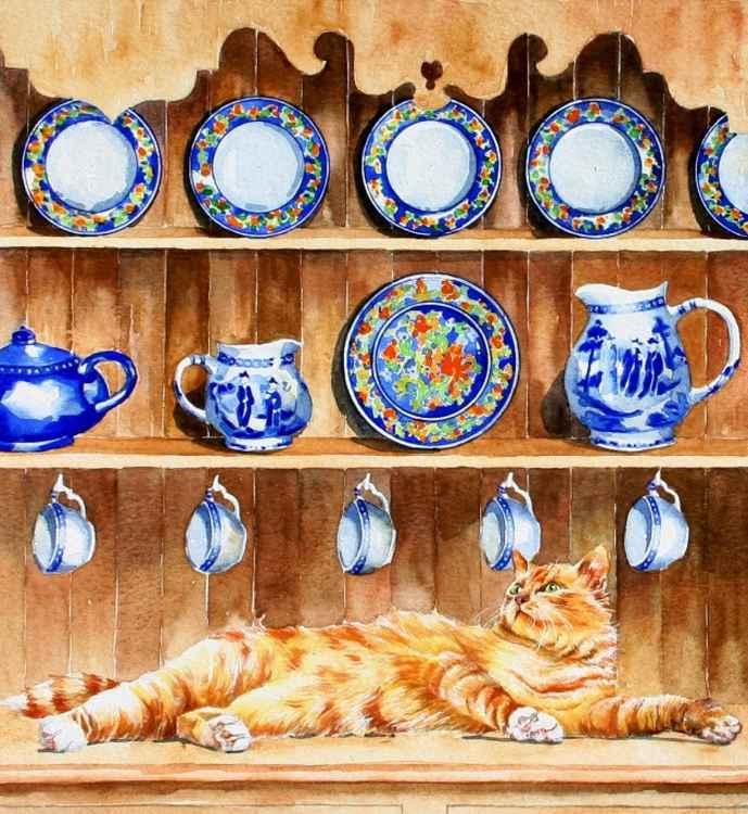 Cat on Welsh Dresser