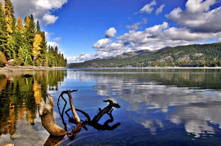 Huckleberry Cove, Payette Lake, Idaho