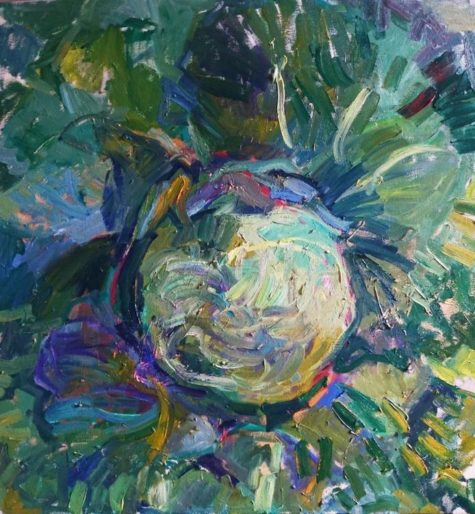 Cabbage - Image 0