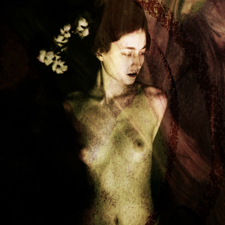 Silent Lover - Limited Edition Canvas Print - Image 0