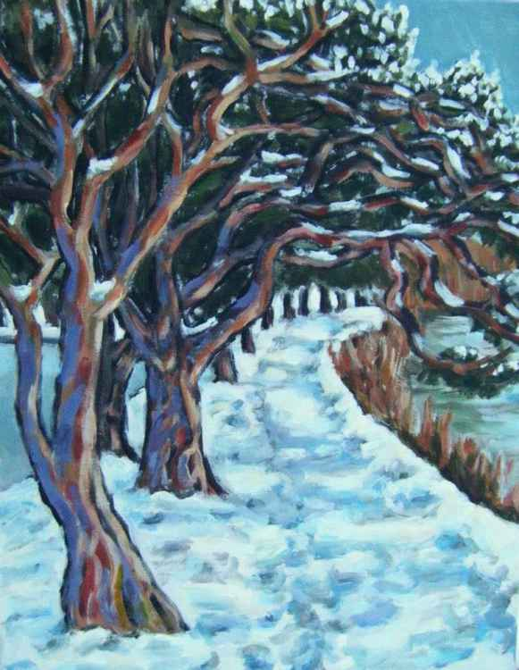 Hinksey Park in snow