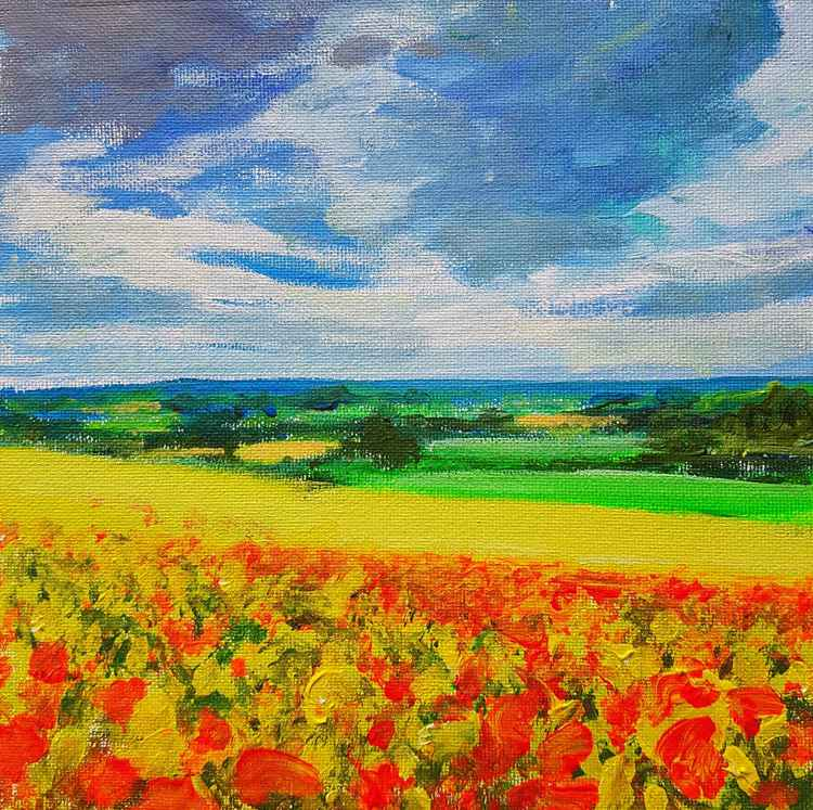 Poppies And Rape Fields No.1