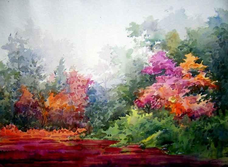 Flowers Garden & Forest