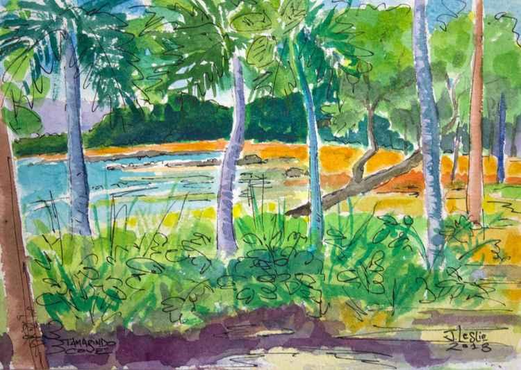 Tamarindo Cove -