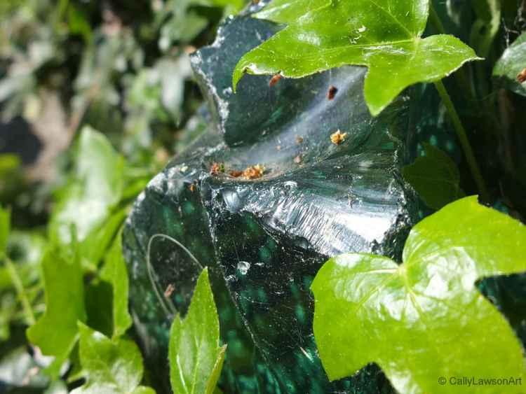 Green glass & ivy