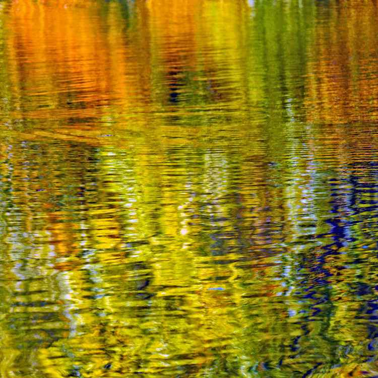 Reflection 14