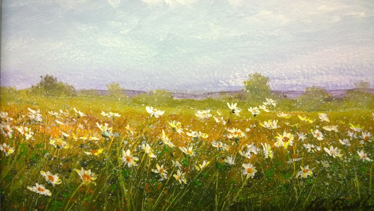 """DAISIES ON ROMNEY MARSH"" - Image 0"