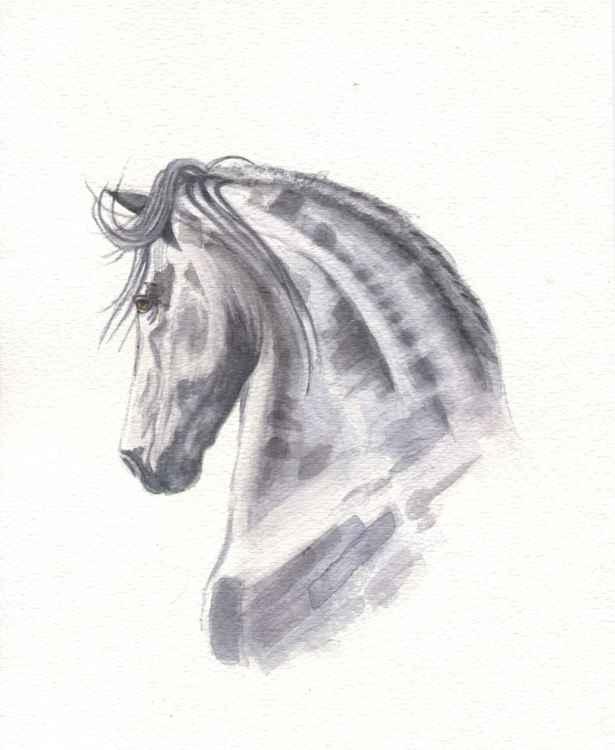 Freesian Horse -
