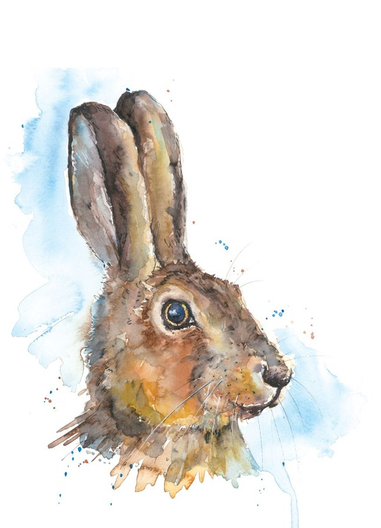 Hare - watercolour - Image 0