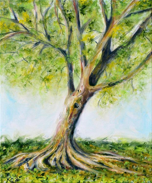 Tree at Riverside Park - Image 0