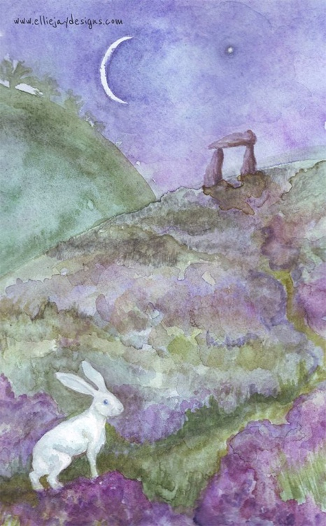 The White Hare - Image 0