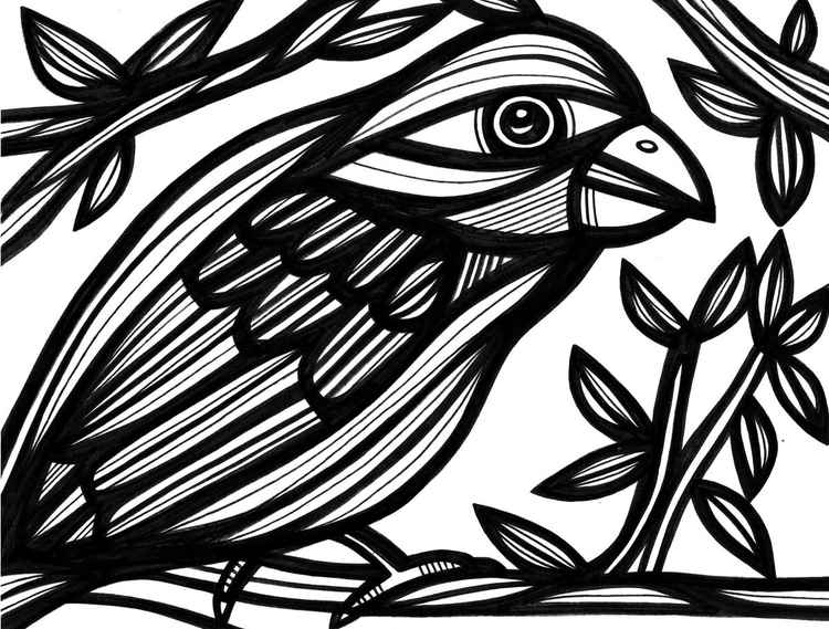 Precipitate Bird Nature Original Drawing -