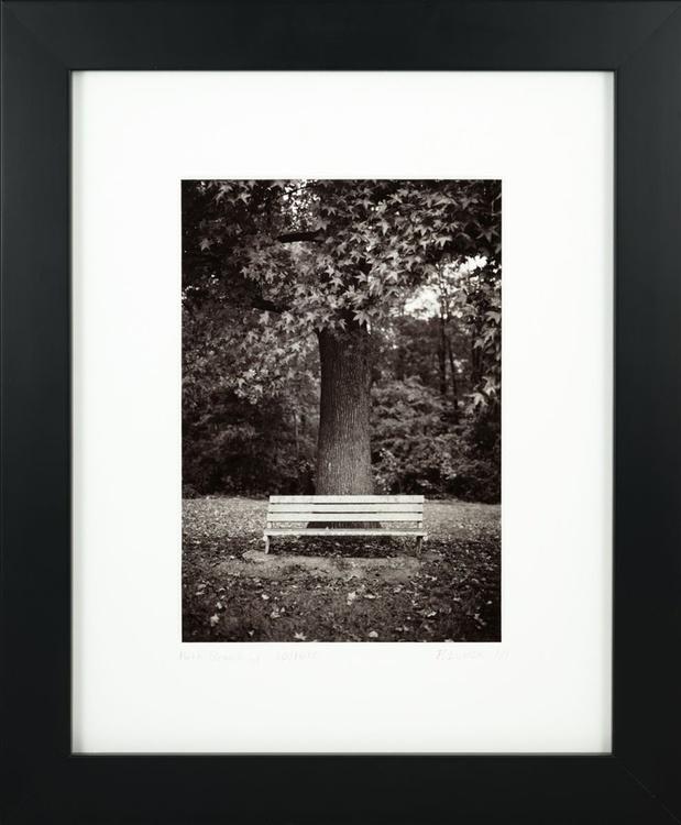 Park Bench v1 - Image 0