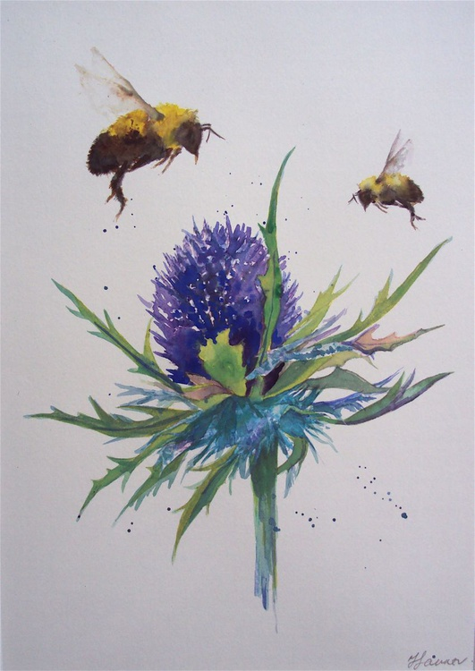 Sea Holly thistle & Bees - Image 0