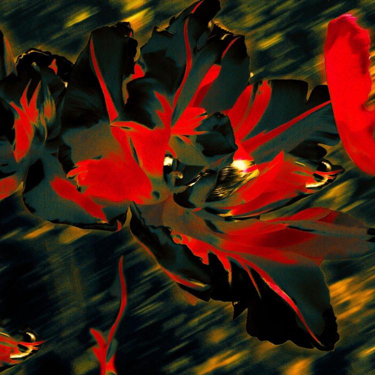 Burning Tulips - Monoprint - Image 0