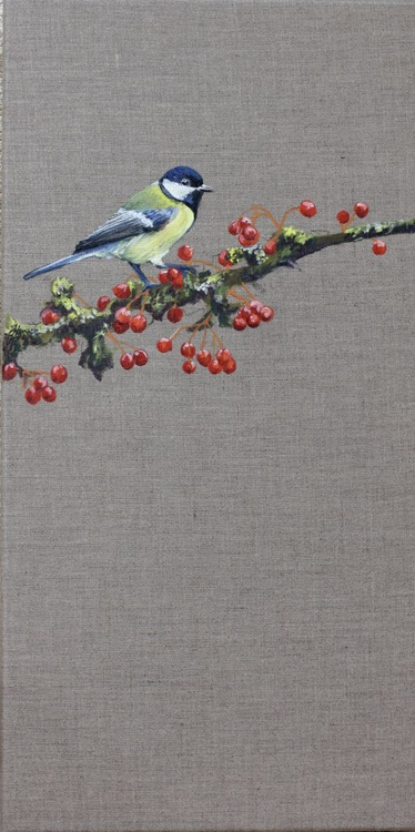 Great Tit and Red Berries - Image 0