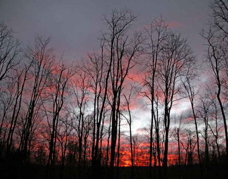 November Sunrise -