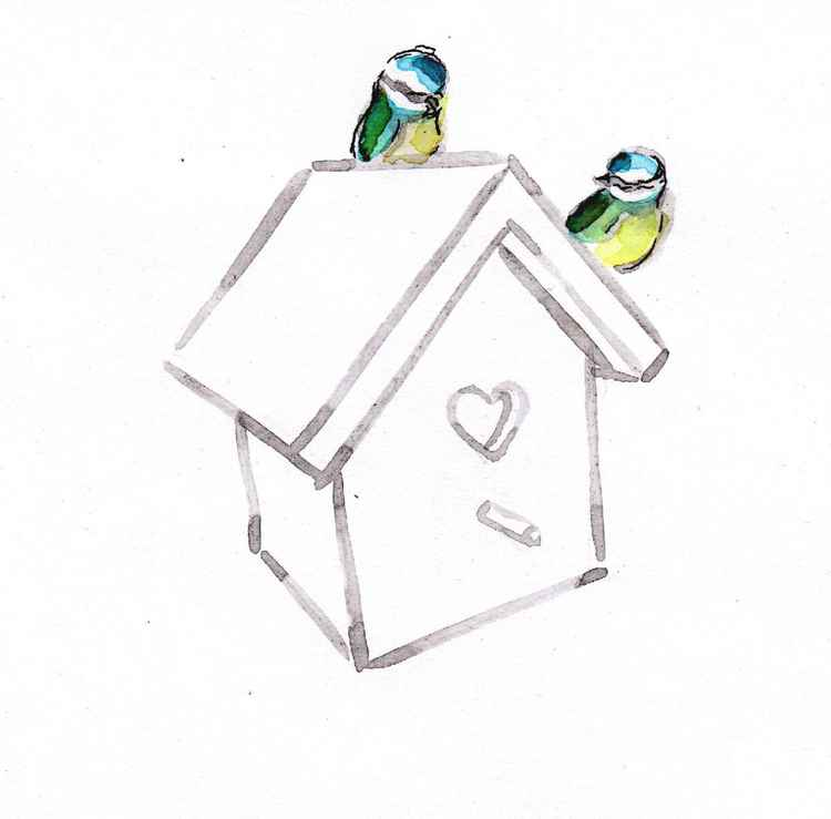 Two blue tits and a birdhouse 1515B