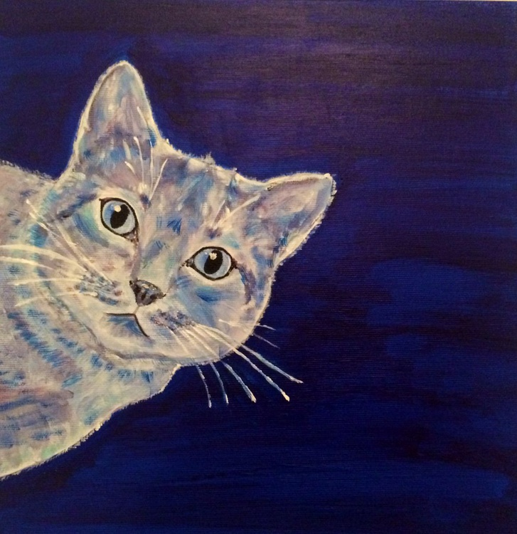 BLUE GARDEN 27 - CURIOUS CAT - Image 0