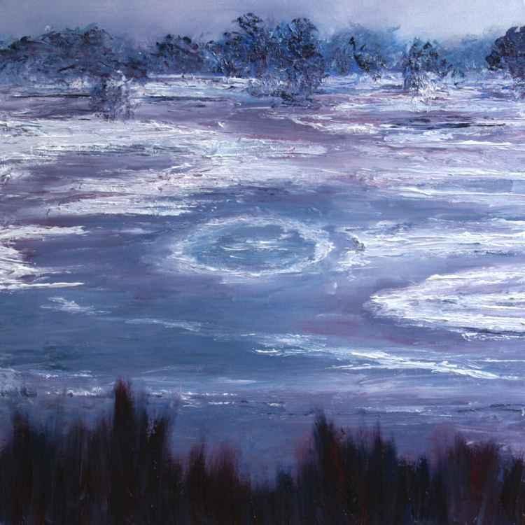 Richmond Park in Ice 2  -