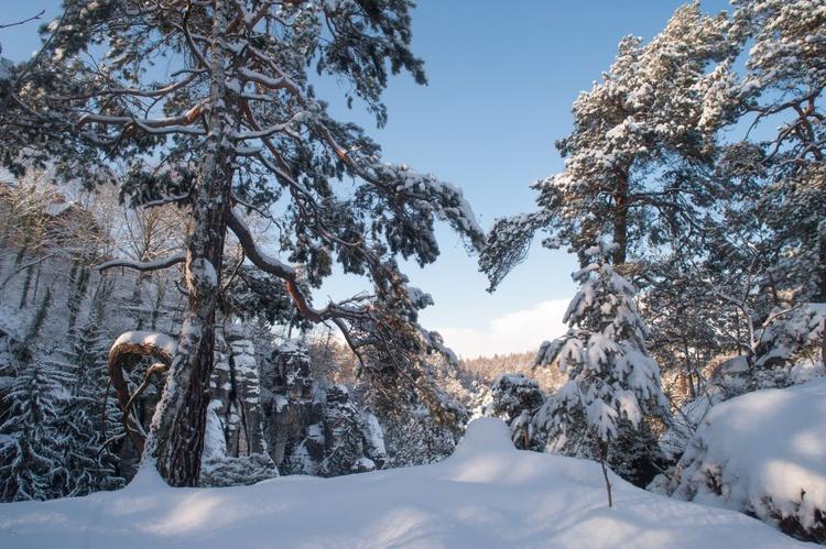 Winter Heart. Saxon Switzerland (Ltd Edition of only 25 Fine Art Giclee Prints from an original photograph) - Image 0