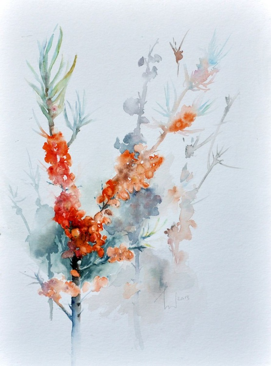 SEA BUCKTHORN original watercolour 30x40 - Image 0