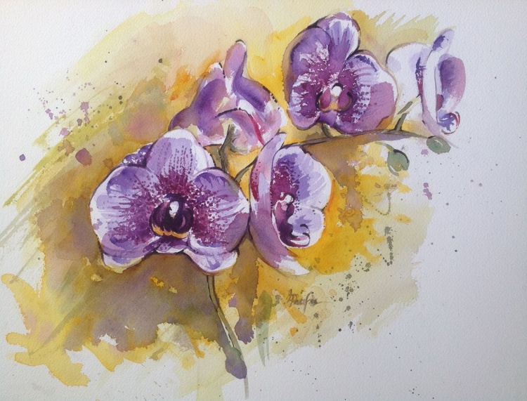 Speckled Orchids - Image 0