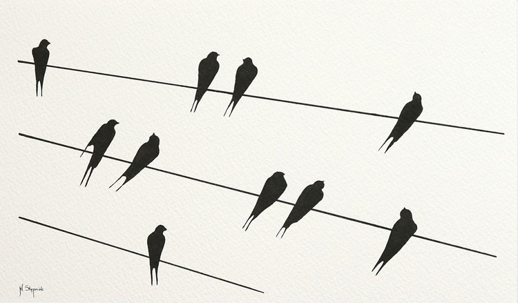 Swallows - Image 0