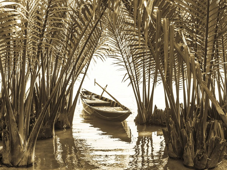 BOAT AMONGST PALMS - Image 0