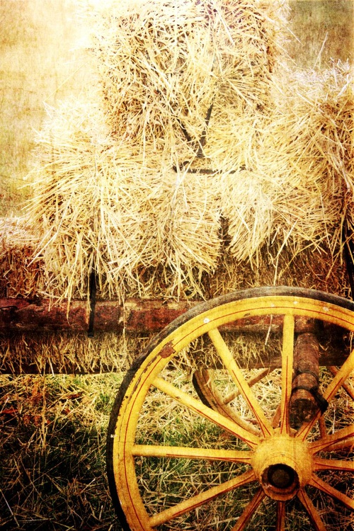 Harvest #2 - Image 0