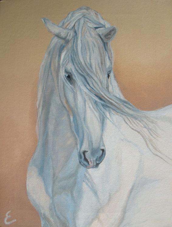 Andalusian Stallion  - Image 0