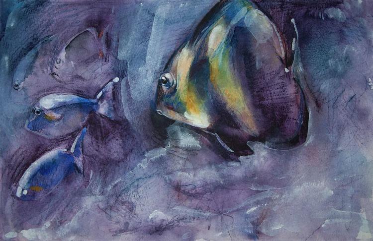 Aquarium #2 - Image 0