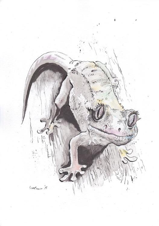Gecko Study - Image 0