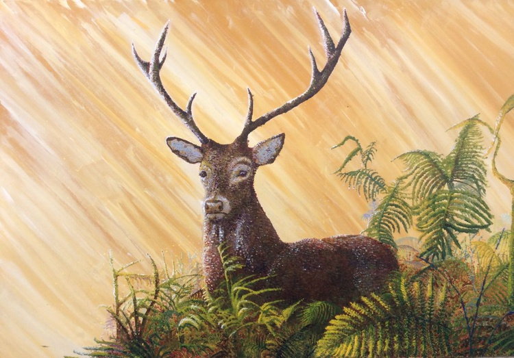 Stag - Image 0