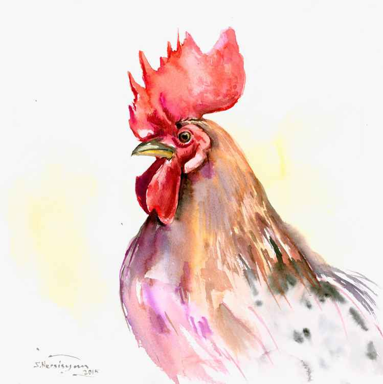 Rooster Portrait -
