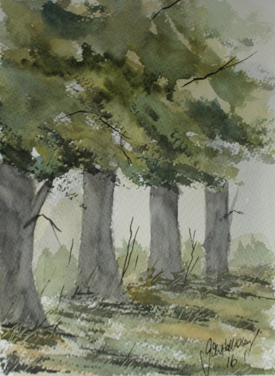 Along the hedgerow - Image 0
