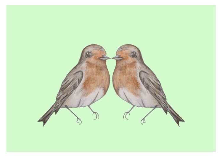 Robins -