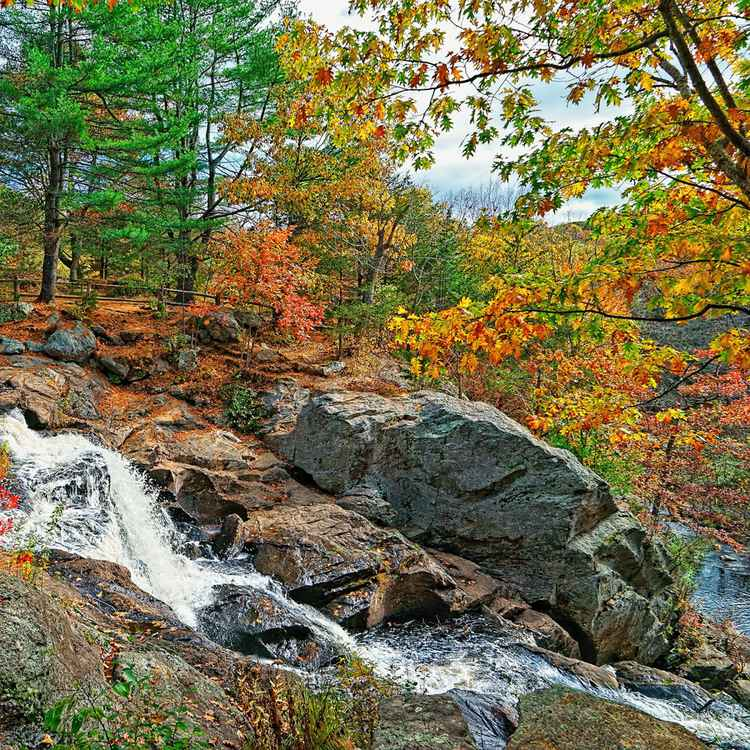 Autumn at Devil's Hopyard -