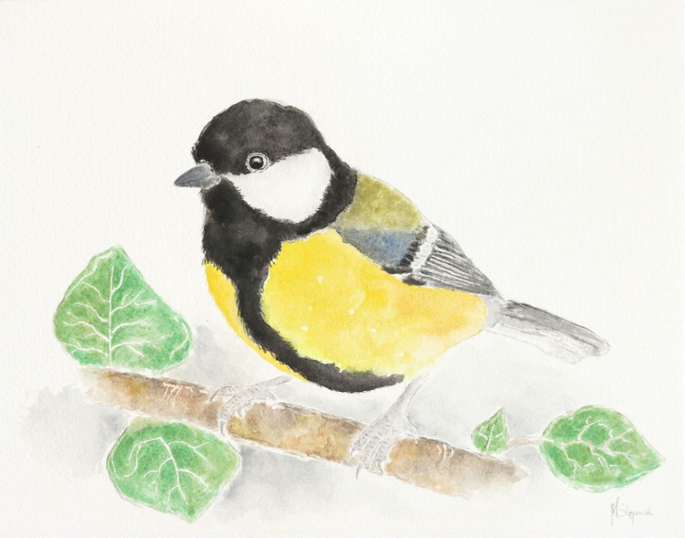 The great tit - Image 0