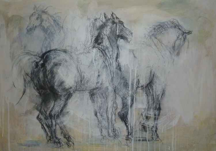 Studies - walking horse -
