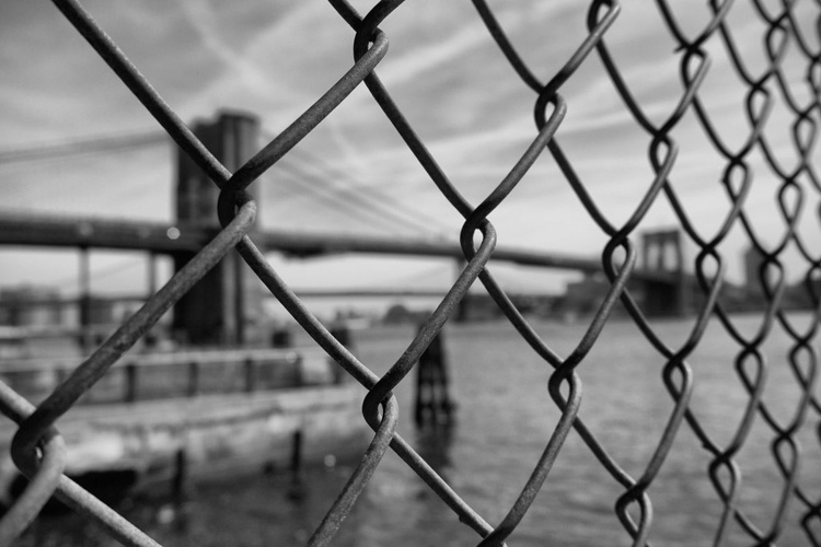 Behind the fence [#201603240] - Image 0